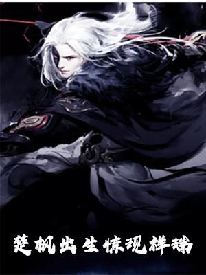 男主是楚枫的小说 楚枫出生惊现祥瑞章节在线阅读