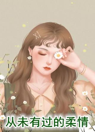 夏小霜小说《从未有过的柔情》全文免费阅读